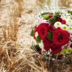 Reinholdshain Hochzeit