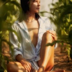 Morgens im Mais